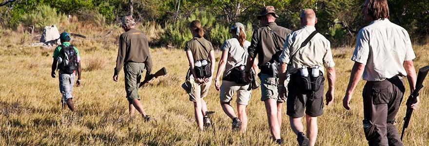 bagages pour un safari